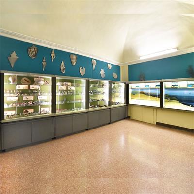 Sala Invertebrati Marini